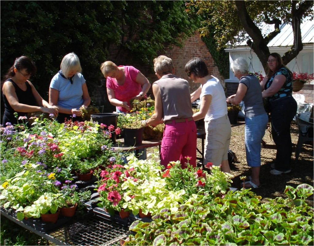 Tatton's Container gardening course