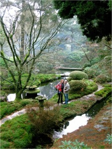 Martin and Amanda in Tatton's Japanese garden1