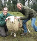 Ellie and Ruth with Tatton's Whitefaced sheep